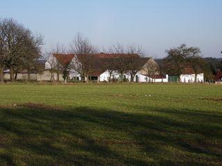 Farm Halle