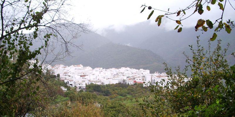 TALIM Andalusia Istan