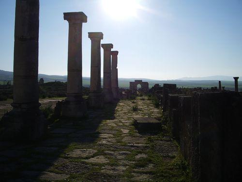 TALIM Volubilis Roman road