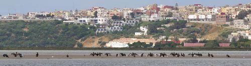 TALIM Merga Village + Cormorants
