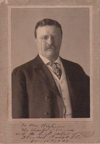 TALIM TheodoreRoosevelt